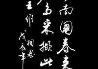 趙玉亭書法作品─只有詩詞與書法相結合,才會如此好看,美不勝收