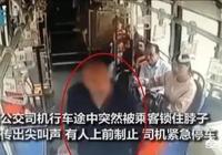南陽66歲大爺坐過站,鎖喉公交司機要求停車,車輛失控嚇壞滿車乘客, 你怎麼看?