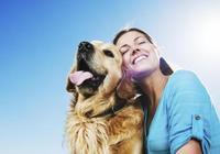 狗常見的幾個壞習慣,不糾正會有大麻煩,你家狗狗有這些壞習慣嗎