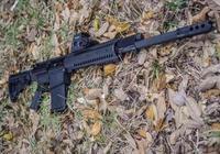 美國RAS-12霰彈槍系統
