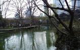 一個人的旅行 上海靜安公園旅遊遊記 大都市感受自然山水的空間