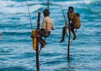 你在釣魚時遇到過哪些令人噁心的事?