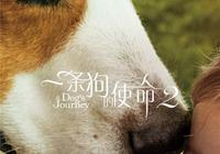 《一條狗的使命2》超前鑑賞 很多記者現場就哭了