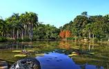 來到雲南旅遊不能錯過的幾大景點,你最喜歡哪一處?