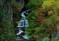 故事:兩道士打賭何時有雨,書生撿到奇異紅葉扔進山谷後便降大雨