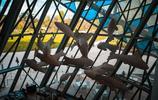 圖蟲建築攝影:路易威登基金會