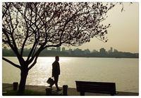 西湖美景三月天