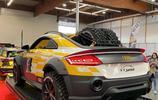 奧迪TT Safari為穿過沙漠的特別改裝車型
