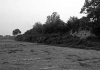 文物之殤 被盜掘的八座東周王陵