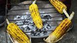 水煮玉米、木炭火烤玉米,你喜歡吃烤的還是煮的?