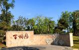 廈門園博苑有一個免費開放的景觀園區,風景優美,很少遊客知道