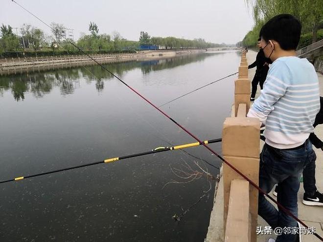 在臭水河裡,釣了一桶魚,回家燉了一聞味道扔掉了