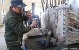 """新疆:廢品變身""""搖錢樹"""",農民靠它增收百萬元,不僅脫貧還致富"""