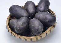 禹音:揭祕黑土豆