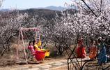 看風景也是看人,山西晉南桃花源裡,人的顏色比花豔