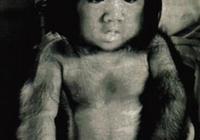 中國第一毛孩與嬌妻結婚,醜小男變天鵝,曾獲邁克爾傑克遜鼓勵