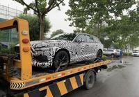 沃爾沃全新V60國內諜照 新車將於8月份上市