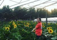 向陽的農業,陽光boy,陽光gril,向陽的日子!