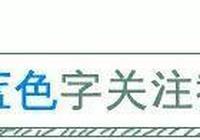 """臨沂農村電商達人劉長龍:一人帶出一個""""淘寶村"""""""