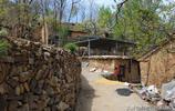 晉南山溝65歲大媽常年待在大山裡,她說這輩子欠老伴的,是咋回事