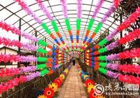 咸陽市蘭池生態園首屆七彩風車展即將繽紛啟幕
