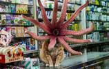 這組超現實的香港攝影作品,你看懂了幾張