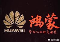 華為推出搭載自己研發的系統的手機,對中國來說意義重大,若干年後,會成為收藏品嗎?