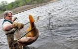 美國已經花了26億對付亞洲鯉魚,密歇根州懸賞690萬再徵良策