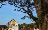 庭院設計:有180度觀景窗和長方形魚池的坡頂別墅庭院私家花園