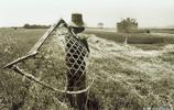 麥收時刻!25張老照片讓你見識20多年前使用各種工具收麥的場景