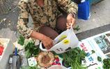 農村大媽隔一條馬路賣地瓜秧子價格相差一倍 地攤貨的價格真難講