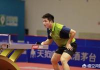 如何看乒超男團第八輪,樊振東再次不敵林高遠?