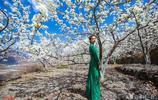 中國最美的梨花在這裡,大山、梨花、人家,恍若隔世的世外梨園
