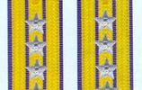 解放軍空軍軍銜以及軍職