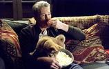 《忠犬八公的故事》:教授和小八,那些催人淚下的瞬間