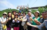 寧波奉化水蜜桃陸續上市,成為當地農民增收致富支柱產業