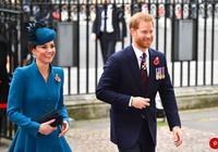 凱特又穿原諒色與哈里一起出席活動,叔嫂這一甜美對視價值幾個億