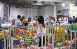 雲南斗南花卉市場——鮮花價格論斤賣,一大束玫瑰只要幾元錢