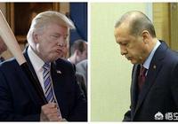 美國以土耳其不再符合發展中國家身份為由,取消其貿易最惠國待遇。真的沒有挾私報復嗎?