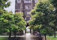 康奈爾大學會計