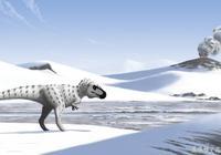 北極發現了迷你霸王龍的化石