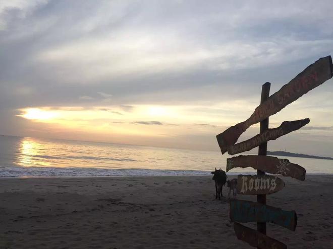 斯里蘭卡作為歐美人最喜歡的度假國家,今天卻上了最悲傷的熱搜