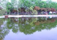 曲阜陵城生態園