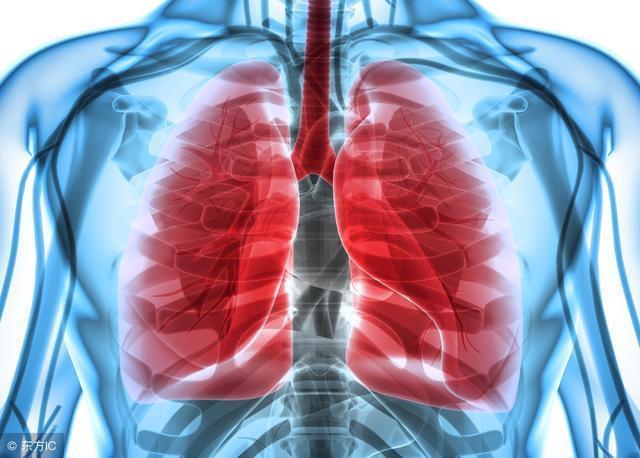 """肺癌最怕這4種食物,常吃把肺癌扼殺在""""萌芽""""中"""
