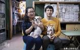 廣州夫妻五年收養40多隻流浪動物 曾抱流浪貓坐公交被趕下車大哭