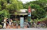 笑出了眼淚,外國遊客吐槽臺灣省像五線城市,導遊回答亮了!