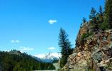 西雅圖自駕,黃石世界上面積最大的森林之一