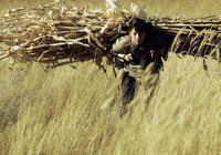 《白鹿原》——對《百年孤獨》的拙劣模仿