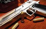 世界名槍圖賞:以色列沙漠之鷹手槍