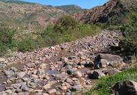 在南方的農村,為什麼有很多莊稼地裡要放幾塊大石頭?有什麼用嗎?